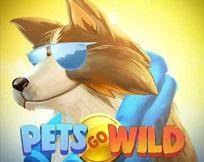 Pets Go Wild